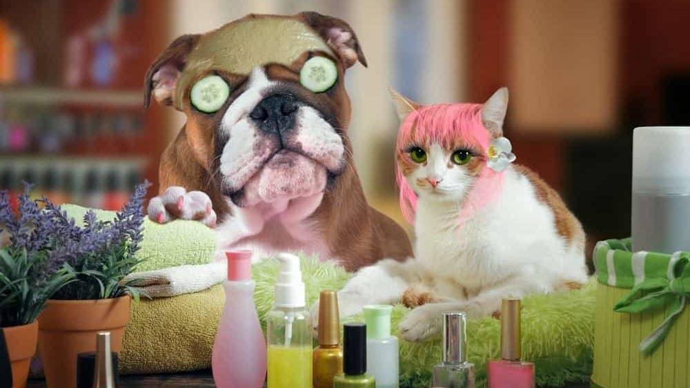cosmetica vegana cruelty free